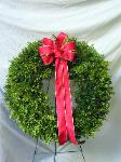 01A Fresh Boxwood Wreath