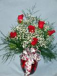 01J 6 Red Roses Arranged